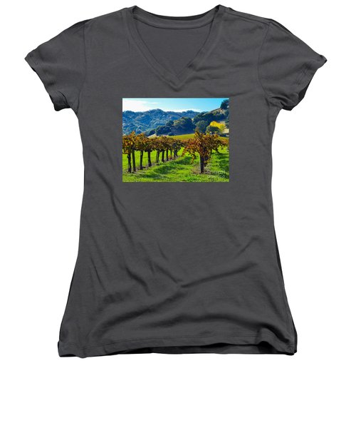 Sunny Autumn Vineyards Women's V-Neck T-Shirt