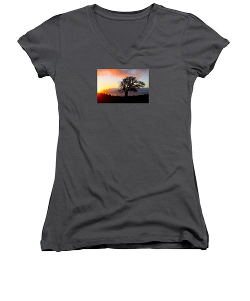 Sunset Tree In Maui Women's V-Neck T-Shirt (Junior Cut) by Venetia Featherstone-Witty