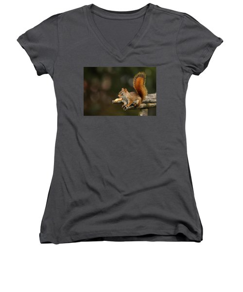 Surprised Red Squirrel With Nut Portrait Women's V-Neck T-Shirt (Junior Cut) by Debbie Oppermann