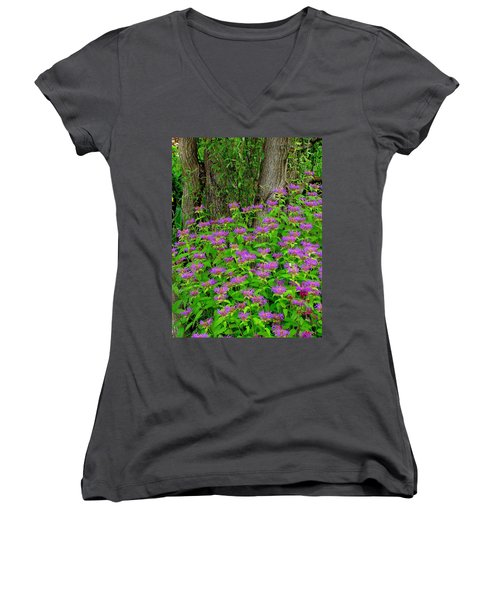 Surrounded Women's V-Neck
