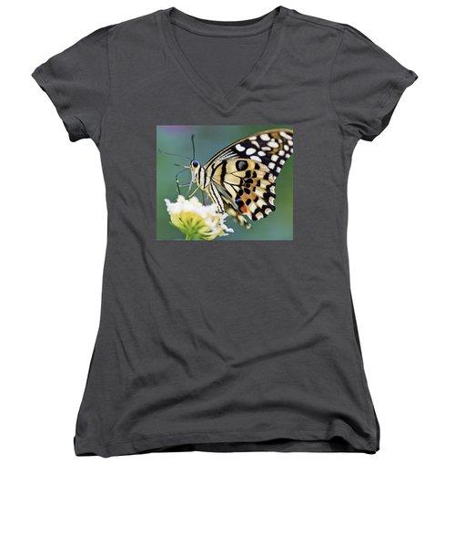 Swallowtail Butterfly Women's V-Neck T-Shirt (Junior Cut) by Maj Seda
