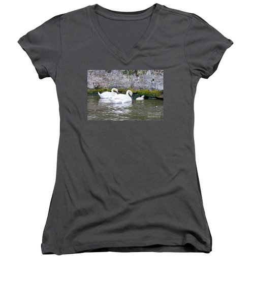 Swans And Cygnets In Brugge Canal Belgium Women's V-Neck (Athletic Fit)