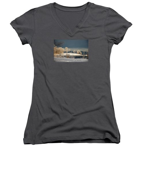 Women's V-Neck T-Shirt (Junior Cut) featuring the photograph Swans On A Frosty Day by Randi Grace Nilsberg
