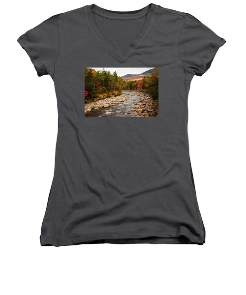Swift River Painted With Autumns Paint Brush Women's V-Neck