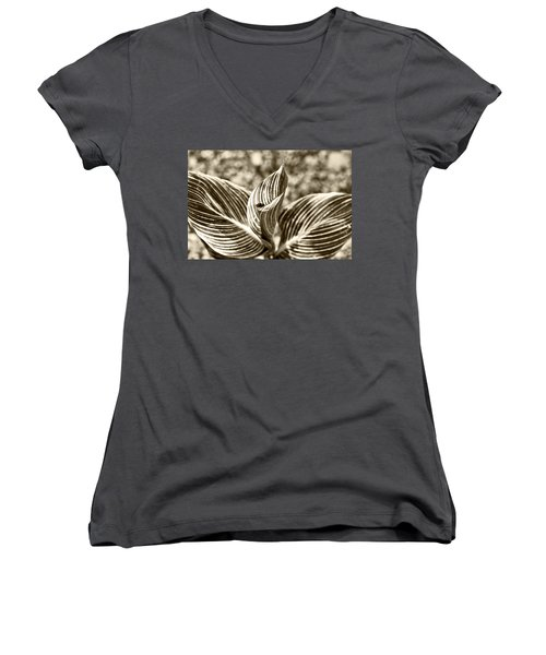 Swirls And Stripes Women's V-Neck T-Shirt