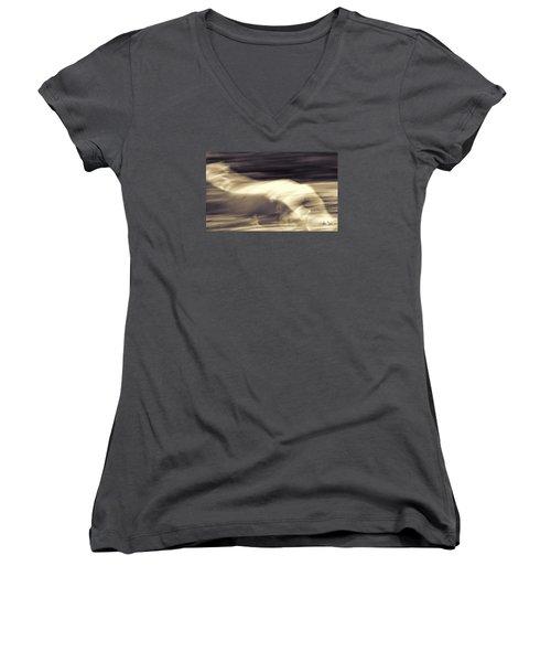Women's V-Neck T-Shirt (Junior Cut) featuring the photograph Synchronicity by Joan Davis