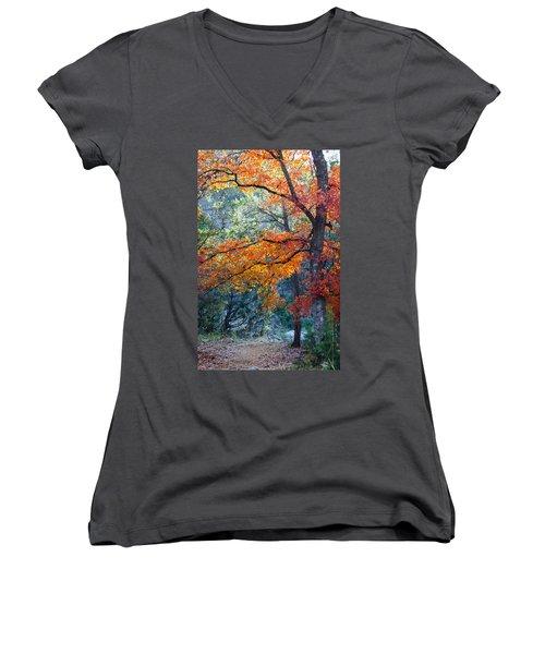 Take A Bough Women's V-Neck T-Shirt