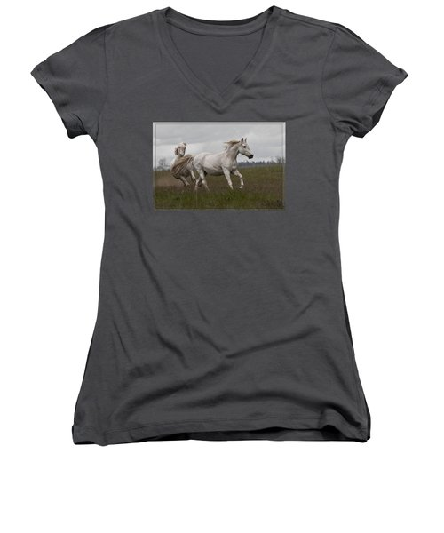 Talegating Women's V-Neck T-Shirt (Junior Cut) by Wes and Dotty Weber
