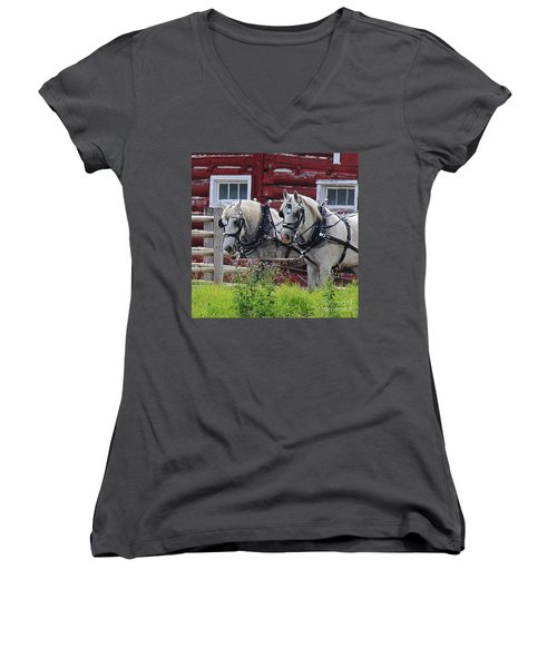 Team Of Greys Women's V-Neck (Athletic Fit)