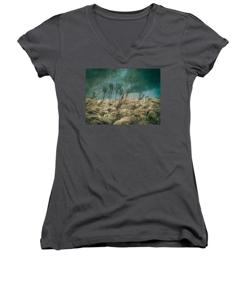 The Calm In The Storm II Women's V-Neck T-Shirt (Junior Cut) by Jessica Brawley