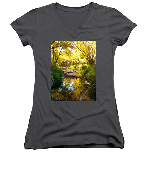 The Calm Side Women's V-Neck T-Shirt (Junior Cut) by Tiffany Erdman