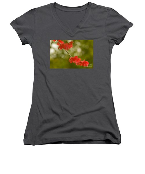 The Essence Of Autumn Women's V-Neck T-Shirt (Junior Cut) by Nick  Boren