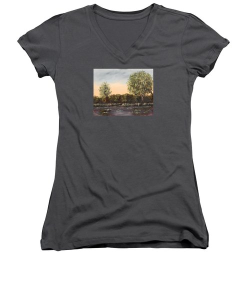 The Far End Of The Pond Women's V-Neck T-Shirt (Junior Cut) by Alan Mager