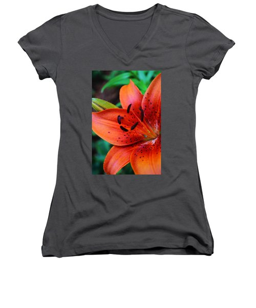 The First Lily Women's V-Neck (Athletic Fit)