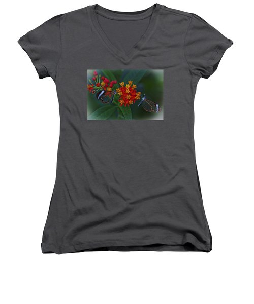 The Glasswinged Butterfly Women's V-Neck (Athletic Fit)