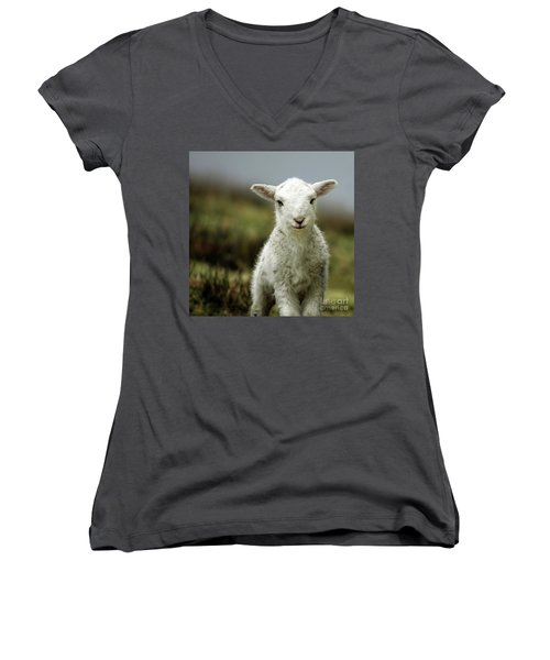 The Lamb Women's V-Neck (Athletic Fit)