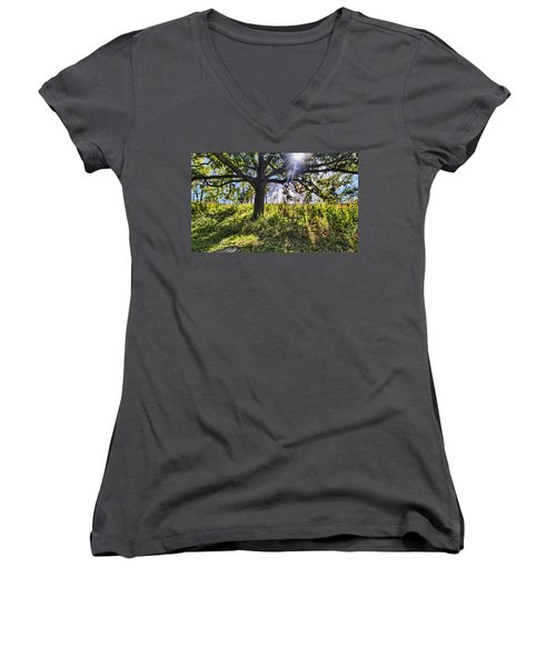 Women's V-Neck T-Shirt (Junior Cut) featuring the photograph The Learning Tree by Daniel Sheldon