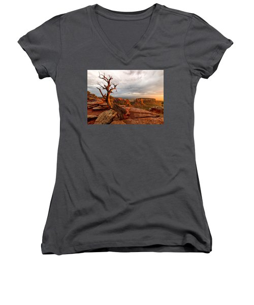 The Light On The Crooked Old Tree Women's V-Neck T-Shirt