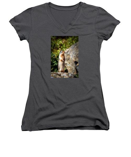 The Marmot Women's V-Neck T-Shirt (Junior Cut) by Robert Bales