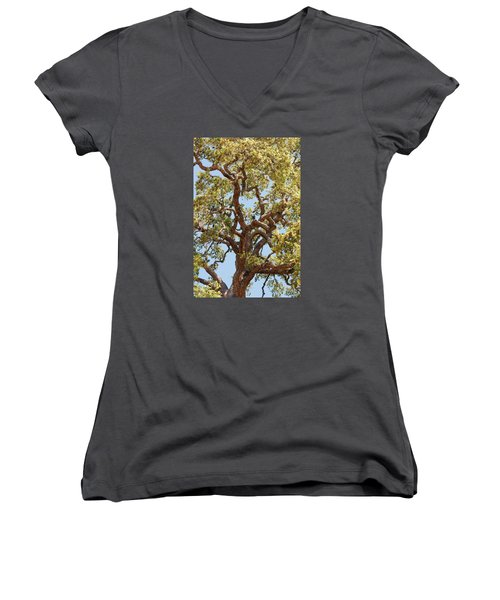 The Old Tree Women's V-Neck T-Shirt (Junior Cut) by Connie Fox