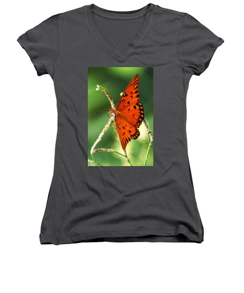 The Passion Butterfly Women's V-Neck