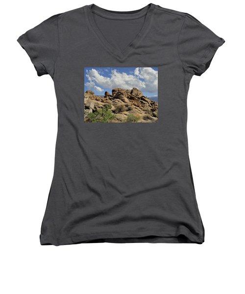Women's V-Neck T-Shirt (Junior Cut) featuring the photograph The Rock Garden by Michael Pickett
