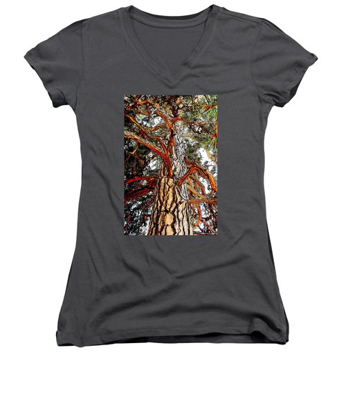 Women's V-Neck T-Shirt (Junior Cut) featuring the photograph The Strong One by Joseph J Stevens