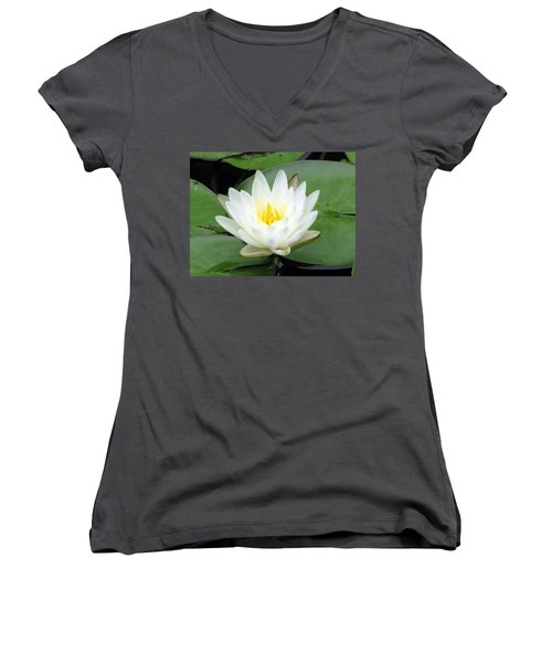 Women's V-Neck T-Shirt (Junior Cut) featuring the photograph The Water Lilies Collection - 04 by Pamela Critchlow