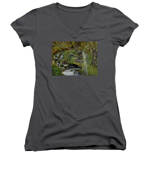 The Willow Woman Washing Her Hair Women's V-Neck T-Shirt