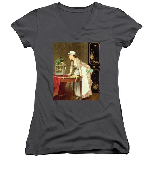 The Yellow Canaries Women's V-Neck T-Shirt (Junior Cut) by Joseph Caraud