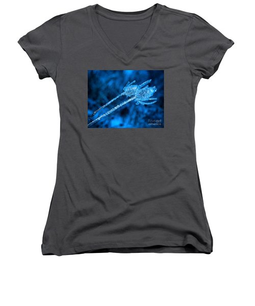 Thistle Plant On Icy Night Women's V-Neck