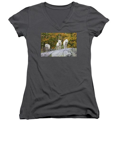 Three Looking At Me Women's V-Neck T-Shirt