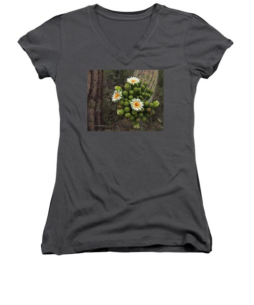 Three Saguaro Blossoms And Many Buds Women's V-Neck T-Shirt (Junior Cut) by Tom Janca