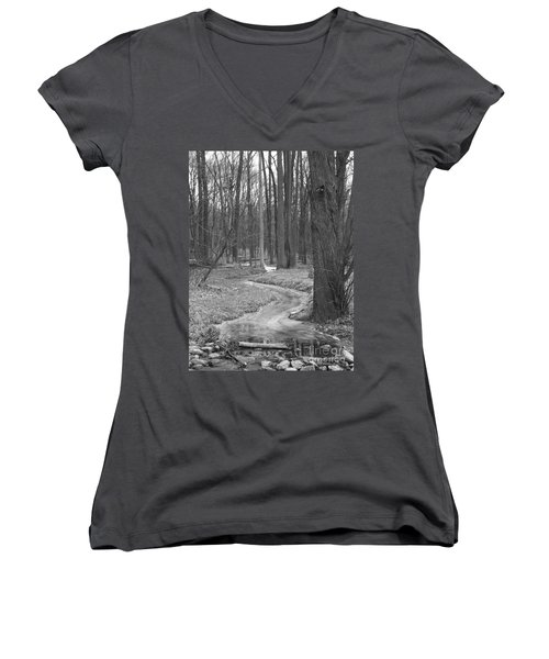 Through The Woods Women's V-Neck T-Shirt (Junior Cut) by Sara  Raber