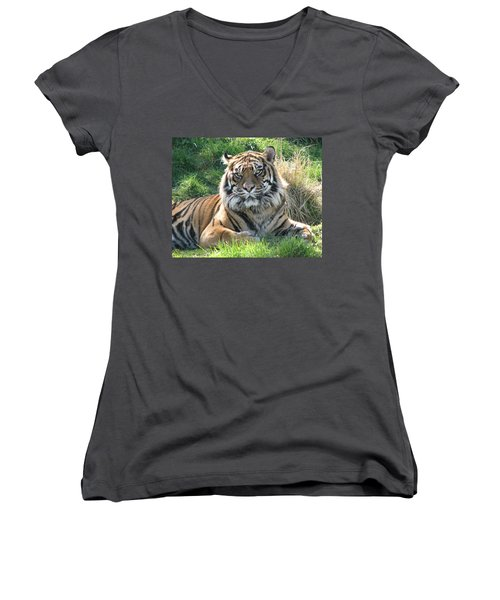Tiger 2 Women's V-Neck T-Shirt