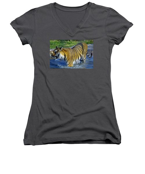 Tiger 4 Women's V-Neck (Athletic Fit)