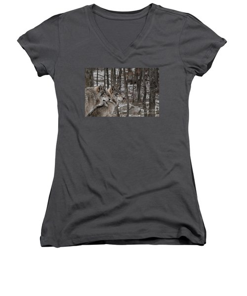 Timber Wolf Pair In Forest Women's V-Neck