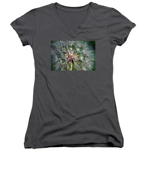 Tragopogon Dubius Yellow Salsify Flower Fruit Seed Women's V-Neck T-Shirt (Junior Cut) by Karon Melillo DeVega