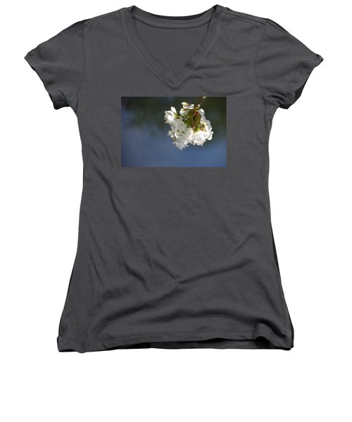 Women's V-Neck T-Shirt (Junior Cut) featuring the photograph Tree Blossoms by Marilyn Wilson