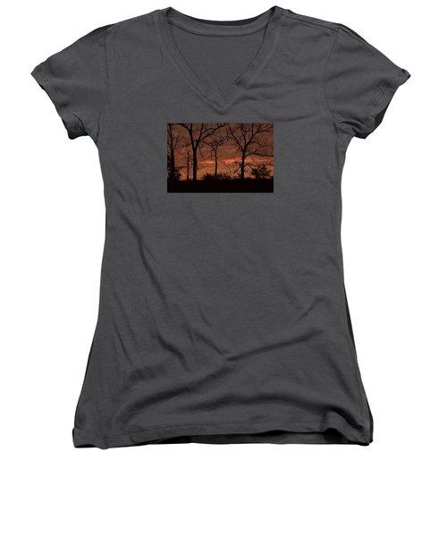 Trees At Sunrise Women's V-Neck