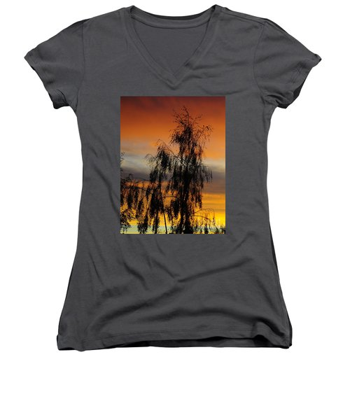 Trees In The Sunset Women's V-Neck