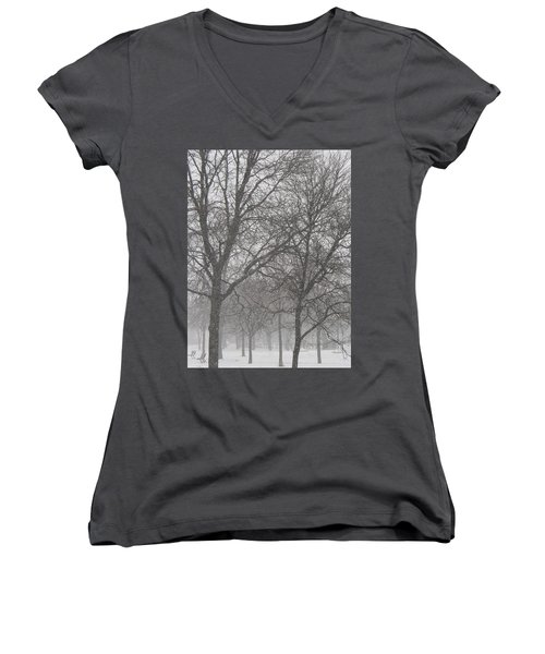 Trees Of Silence Women's V-Neck (Athletic Fit)