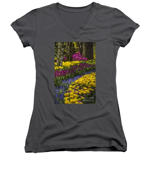 Tulip Beds Women's V-Neck T-Shirt