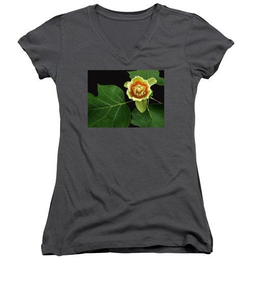 Tulip Bloom Women's V-Neck T-Shirt