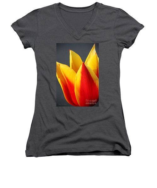 Tulip Women's V-Neck T-Shirt