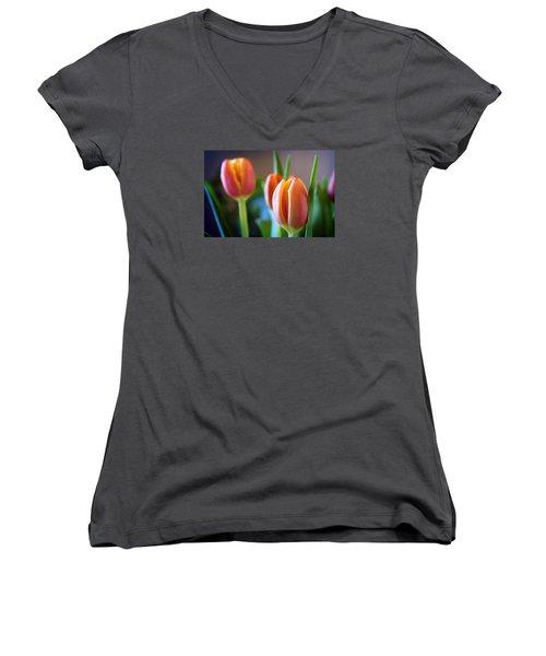 Tulips Artistry Women's V-Neck T-Shirt (Junior Cut) by Milena Ilieva
