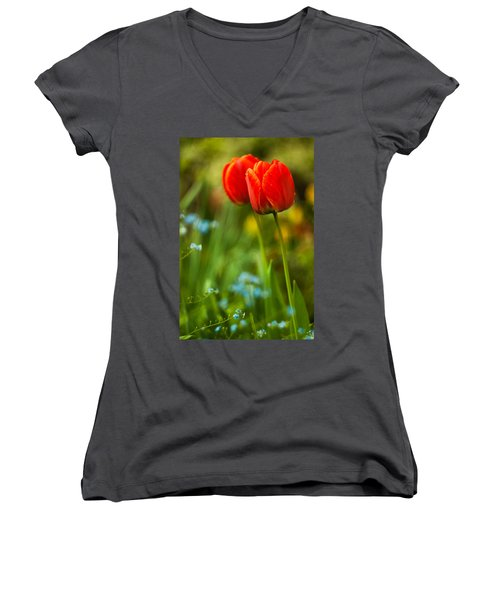 Tulips In Garden Women's V-Neck T-Shirt
