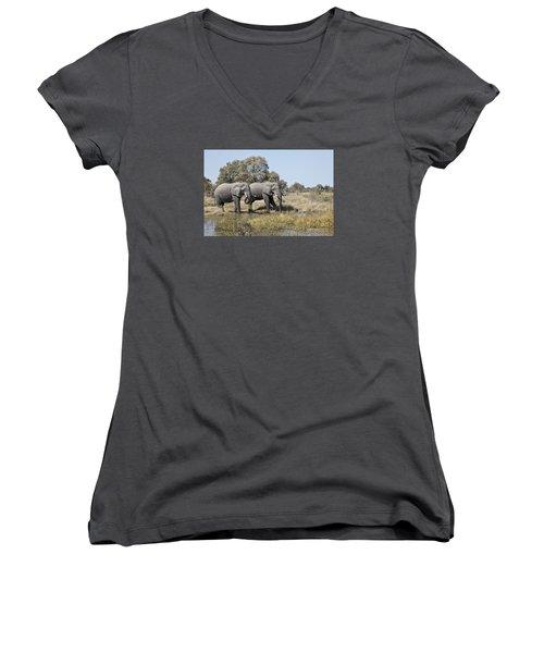 Two Bull African Elephants - Okavango Delta Women's V-Neck T-Shirt