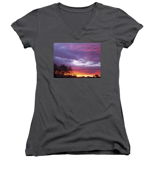 Unforgettable Majestic Beauty Women's V-Neck T-Shirt