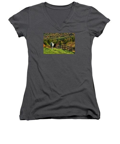 Women's V-Neck T-Shirt (Junior Cut) featuring the photograph Up The Hill by Joan Davis